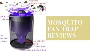 Mosquito fan trap